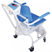 MCW Chair Weighing Scale 1