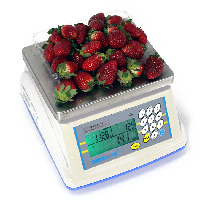 Digital Food Scales & Meat Scales for Catering Applications - AE